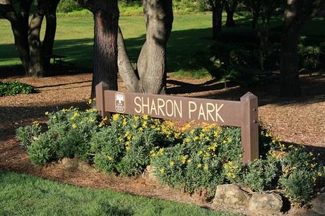 Sharon Park