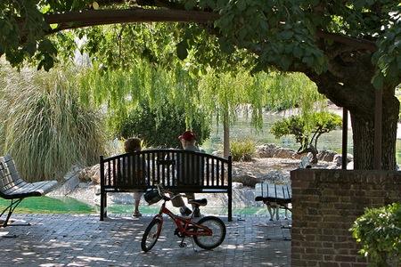 Sharon Park Menlo Park