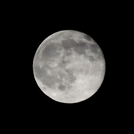 Post image for Full Moon over Menlo
