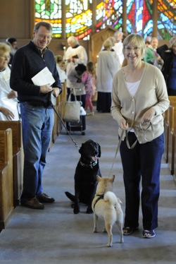 Post image for It's take your pet to church day