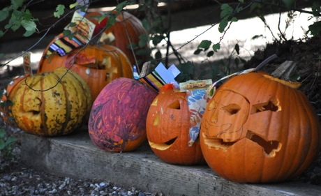Halloween parades – and pumpkins – all over town
