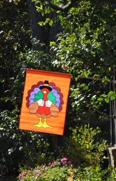 Spotted: Turkey day flag
