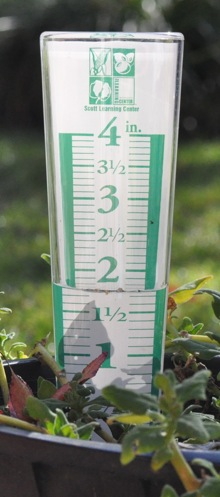 Rain gauges sprout in local gardens