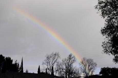 Rainbow and blue skies – latest rainfall update