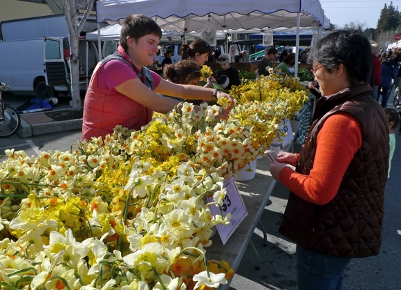 Sun shines on weekly farmer's market