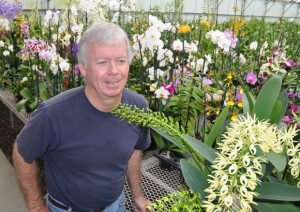 Brookside orchids' Mark Pendleton