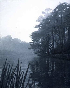 Stow Lake, an etching by Terry Steinke