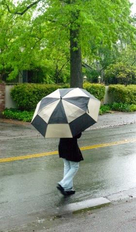 Late April rain brings out the umbrellas again