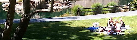Picnic in Sharon Park - InMenlo.com