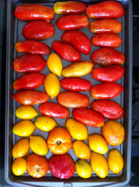 Tomatoes from Menlo Park Farmer's Market in the roasting pan
