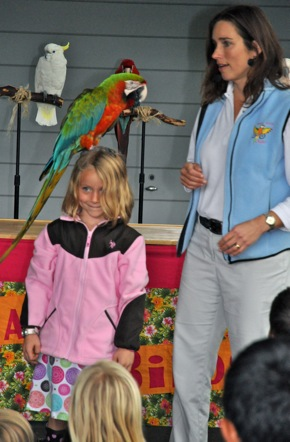 Happy Parrot show in Menlo Park, CA