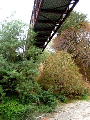 Under Menlo: The Ohlone-Menlo bike/pedestrian bridge