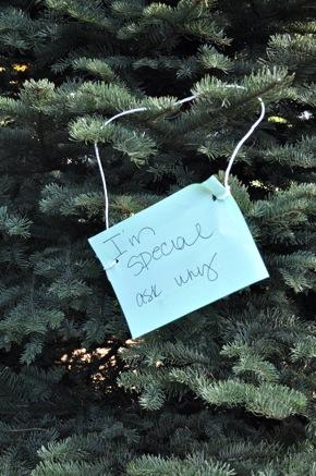 Local Christmas tree lots open in Menlo Park