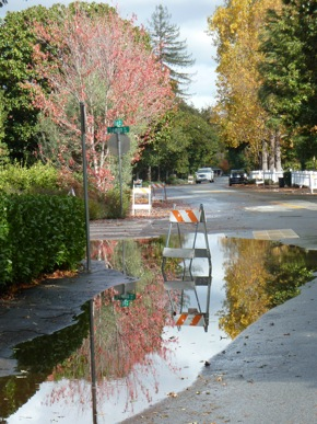 big puddle post storm in Menlo Park