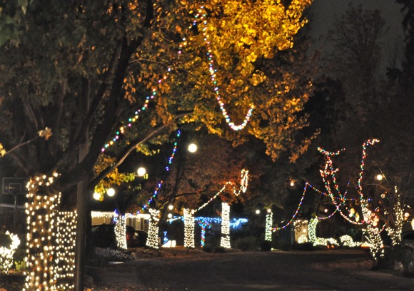Christmas light on Linfield Drive in Menlo Park, CA