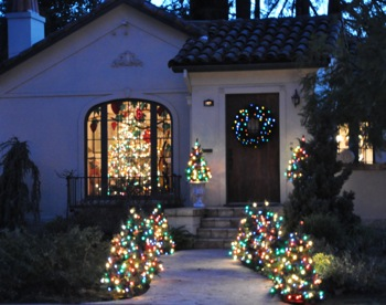 Front yard brimming with Christmas trees