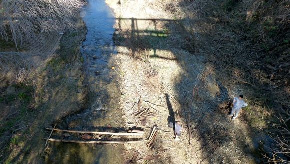 Spotted: New bridge over San Francisquito Creek?