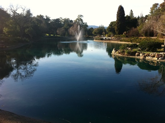 Sharon Park, Menlo Park by Scott Loftesness