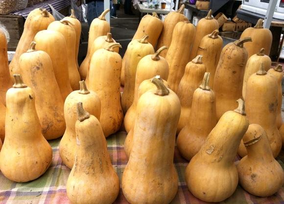 Chorus of gourds at Menlo Park farmers market