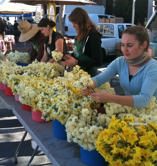 """Oh, those flowers"" – wintertime treat at Menlo Park farmers market thanks to Bill the Bulb Baron"