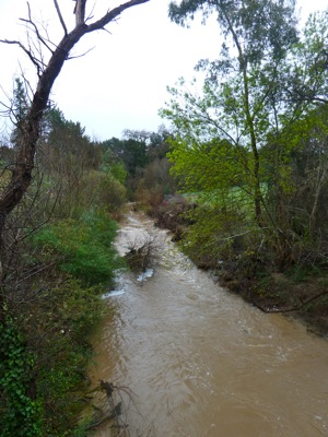 San Francisquito Creek on Feb. 18, 2011