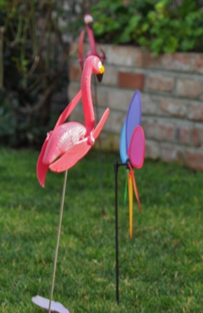 Flock of flamingos with a fundraising purpose