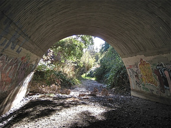 Under Pope Street bridge from Menlo Park to Palo Alto