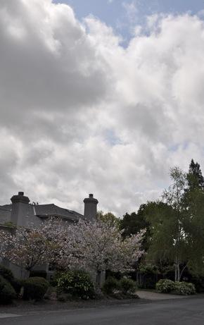 weather in Menlo Park in April