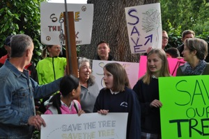 tree protest in Menlo Park