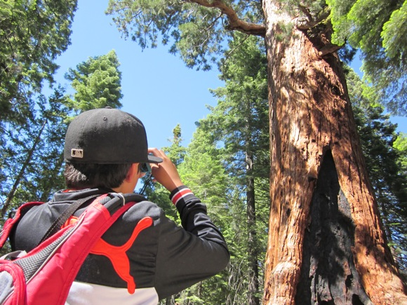 Menlo Park youth explore and photograph Yosemite National Park