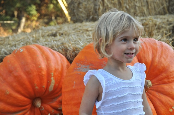 Young Menlo Park resident at Webb Ranch pumpkin patch