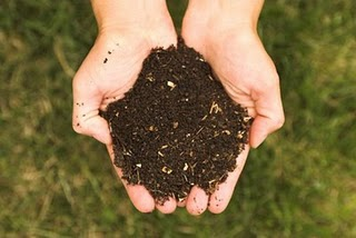 good composing soil