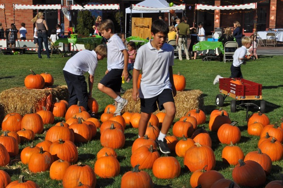 Checking out the St. Raymond Pumpkin Festival