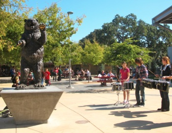 new M-A bear statue