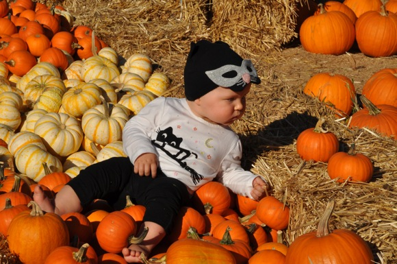 Spotted: Baby in a pumpkin patch