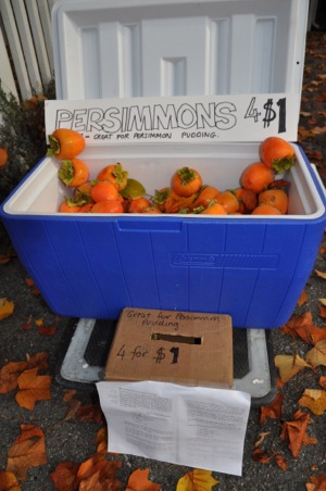 Spotted: Latest salvo in the persimmon war