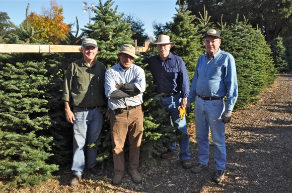 Kiwanis volunteers at tree lot