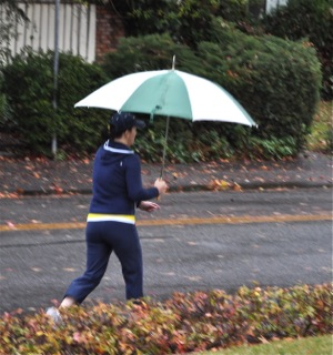 Monday morning umbrella in Menlo Park, CA