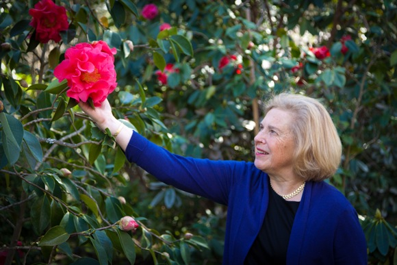 Barbara Tuffli with reticulata hybrid camellia