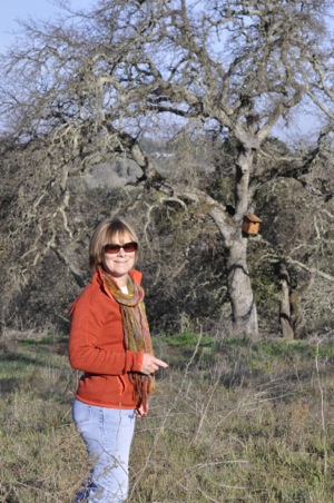 Nancy Benson at The Horse Park