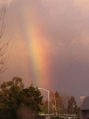 rainbow over Menlo Park