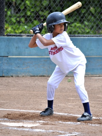 Alpine Little League wood bat participant