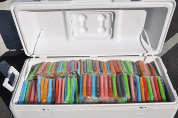 Otter Pops at Otter Run in Menlo Park