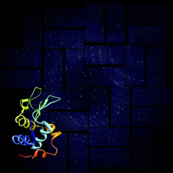 lysozyme rendering