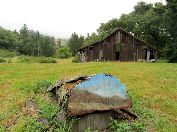Djerassi sculpture tour