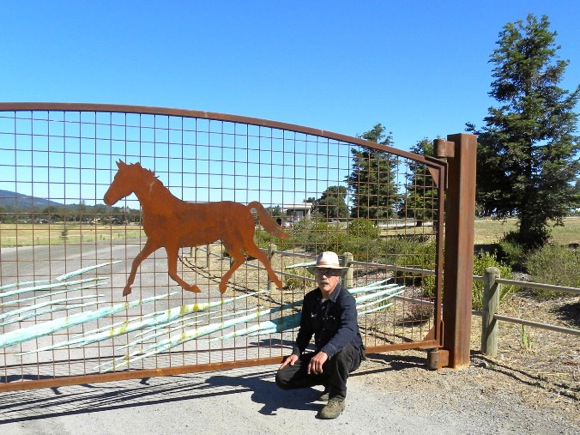 New gate at Horse Park in Woodside