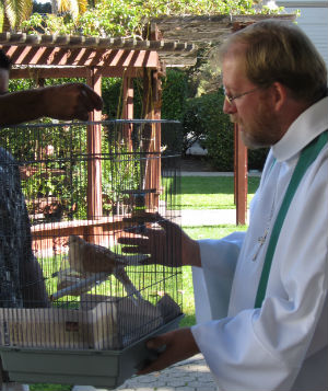 It's the animals turn to get blessed at Trinity Church