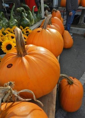 Cozzolino pumpkins