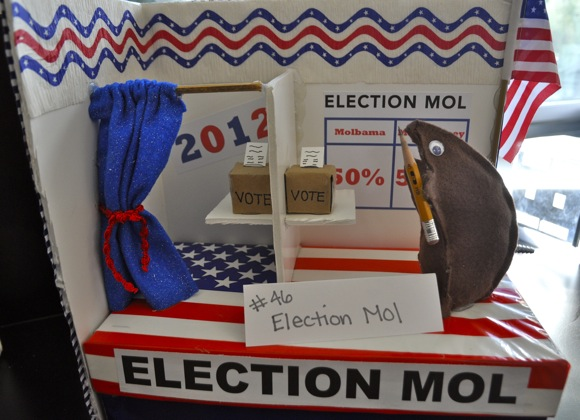 Election moles at Sacred heart
