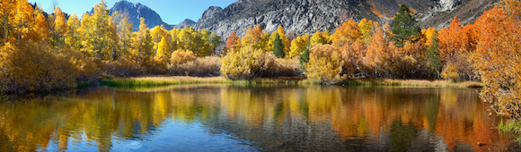 Fall Colors - June Lake Loop - 2012